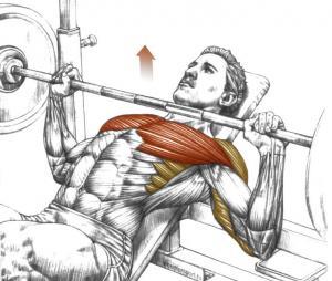 Как накачать широкую, рельефную грудь!