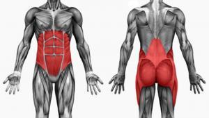 Как создать мышечный корсет